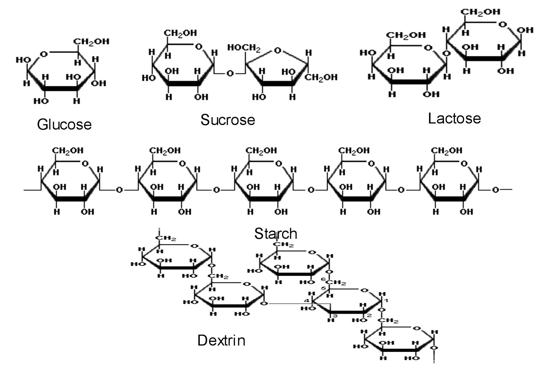 carbohydrate structure diagram wire for trailer carbohydrates are sugars and starches simple like