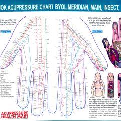 Acupressure Diagram Of Pressure Points Isuzu Rodeo Stereo Wiring Sujok Chart Meridian Acupuncture Pinterest