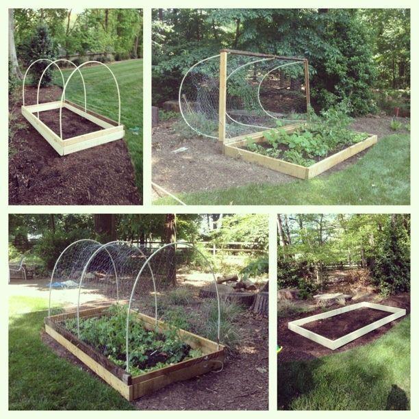 Diy Garden Barrier DIY Deer Proof Veggie Garden The Great