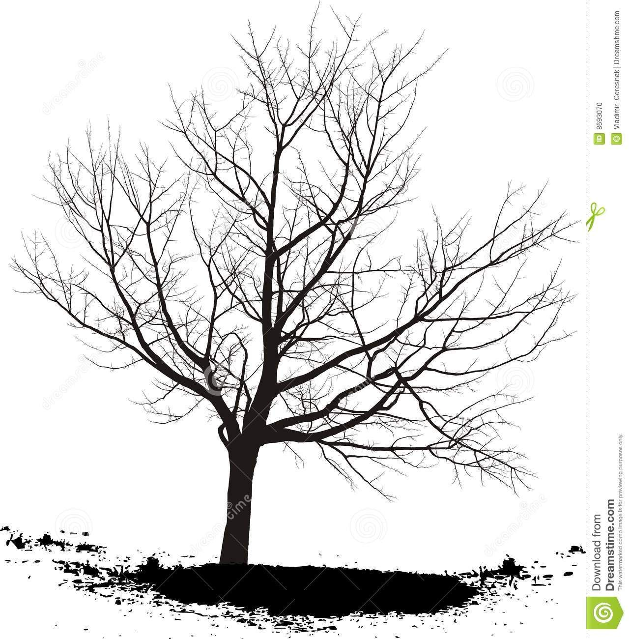 Black And White Tree Drawings Background 1 Hd Wallpapers