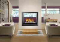 Napoleon HD81 Large See Thru Fireplace with great heat ...