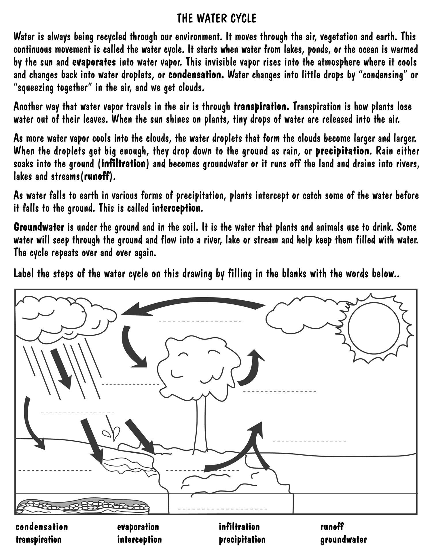 Worksheet Water Cycle Diagram Worksheet Grass Fedjp Worksheet Study Site
