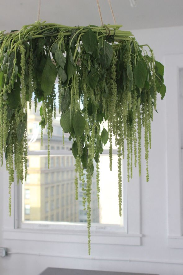 Miss Kris Kin Community You Re Invited Plant Chandelier Plantelier