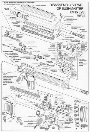 Exploded AR15 parts diagram   AR15   Pinterest   Ar15