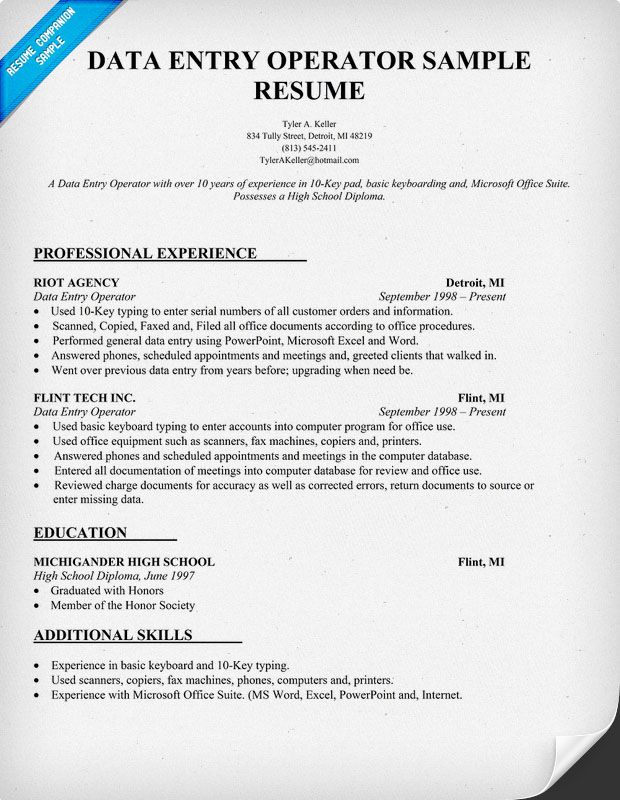 Professional Resume Template  Resume Template  Pinterest
