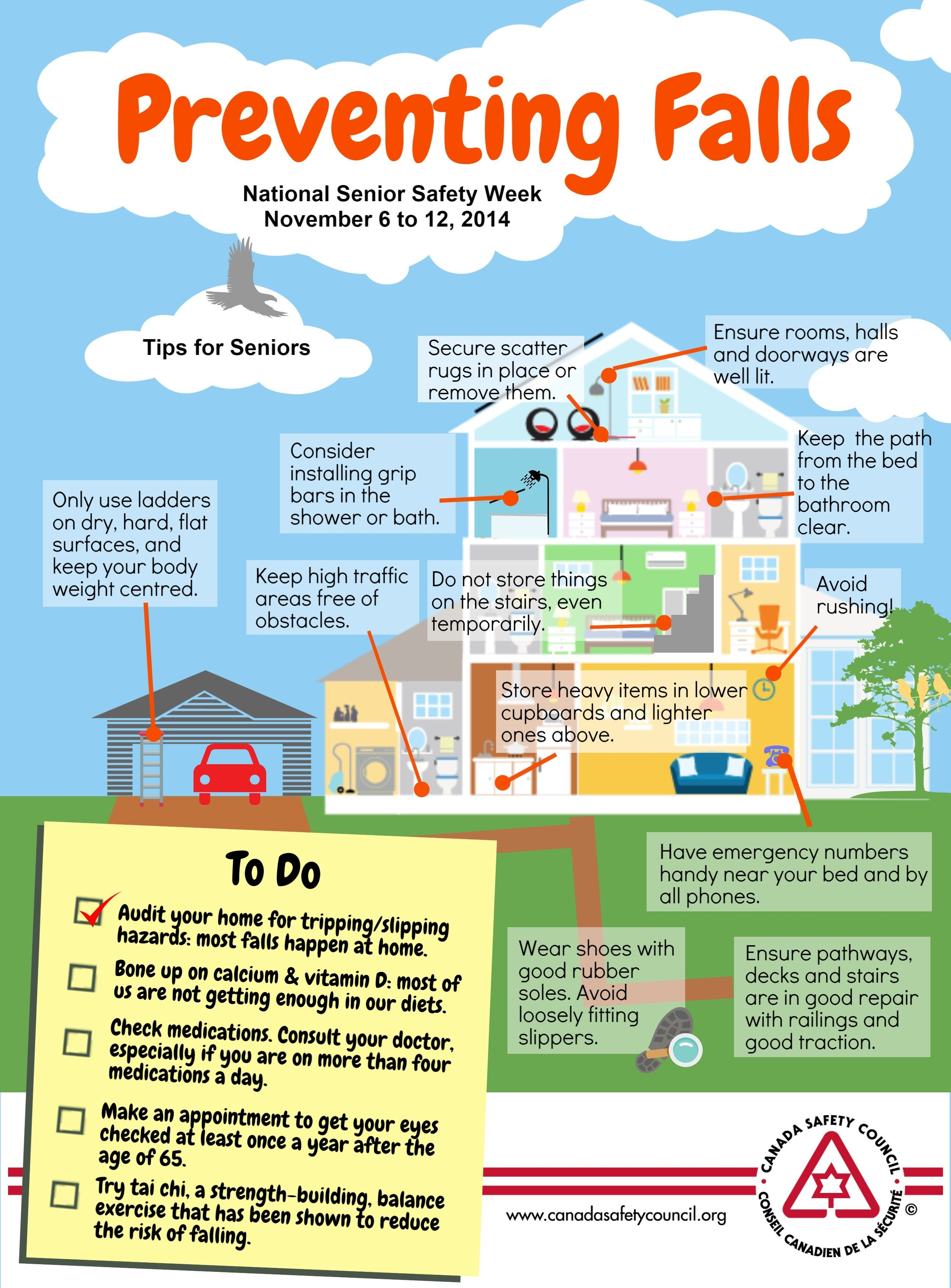 Tip 1 Falls Prevention Check Your Home For Tripping And