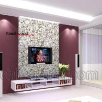 TV ideas on a Large Wall