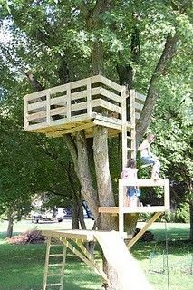 LOTS And Lots Of Tree House Ideas Jeff Pinterest Tree Houses