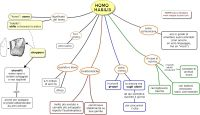 Mappa concettuale su l'HOMO HABILIS STAMPARE LA MAPPA: 1 ...