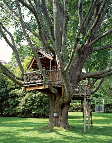 A Backyard Treehouse Inspired By Hobbits Tree Houses Treehouse