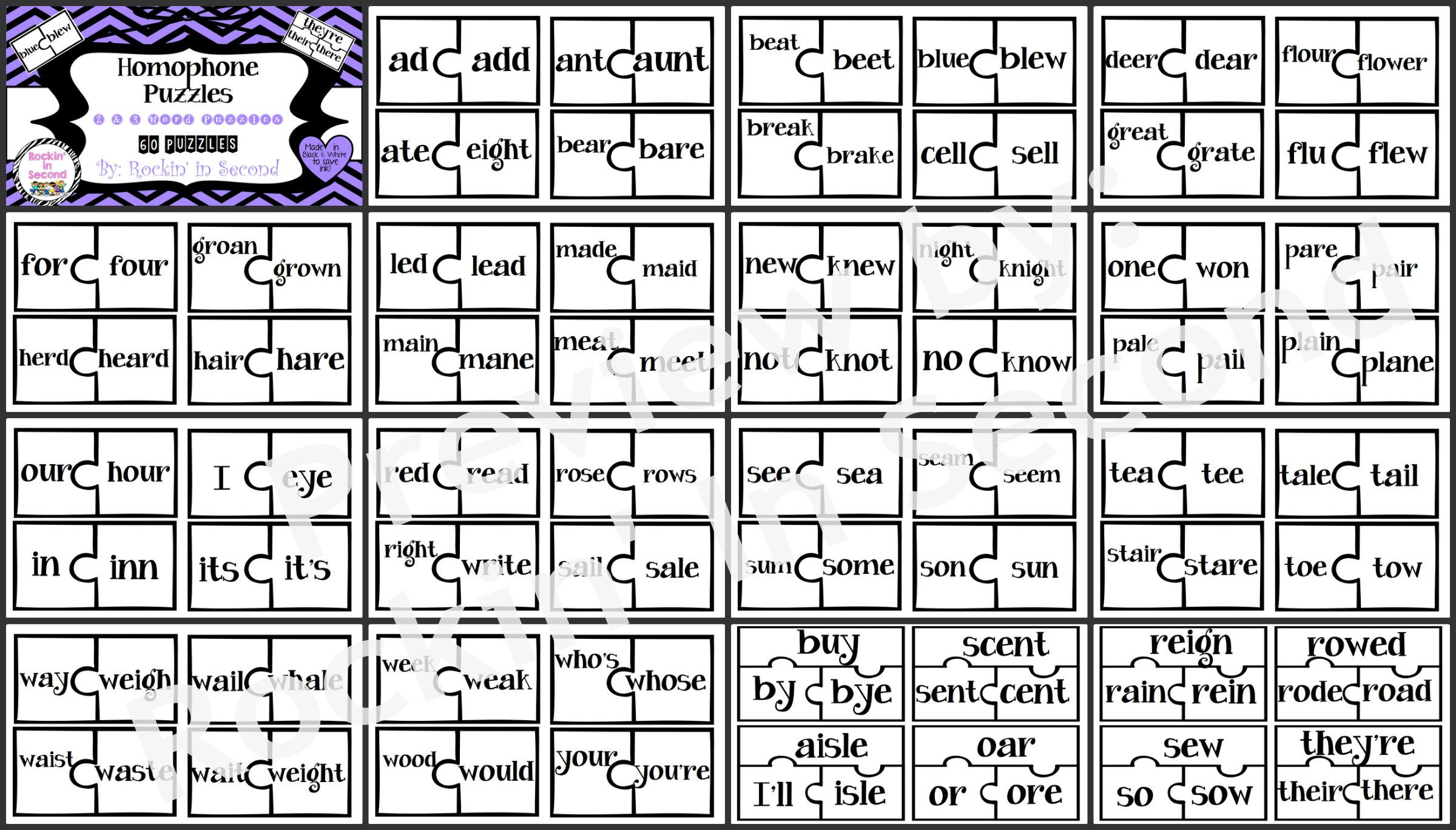 Homophone Puzzles Task Cards