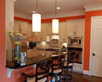 orange kitchen walls, bold colored kitchen walls | Accent ...