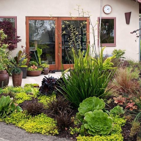 small space garden in southern