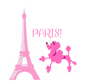 Girls Wallpaper Decals With Eifle Tower Pink Poodle In Paris Party Birthday Party Ideas For Kids