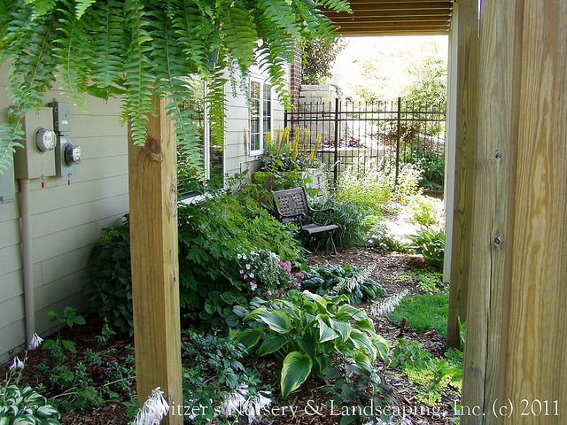 I Want To Plant A Shade Garden Under The Deck Stairs Garden And