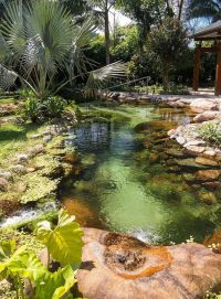 Beautiful backyard pond | Landscaping | Pinterest | Pond ...