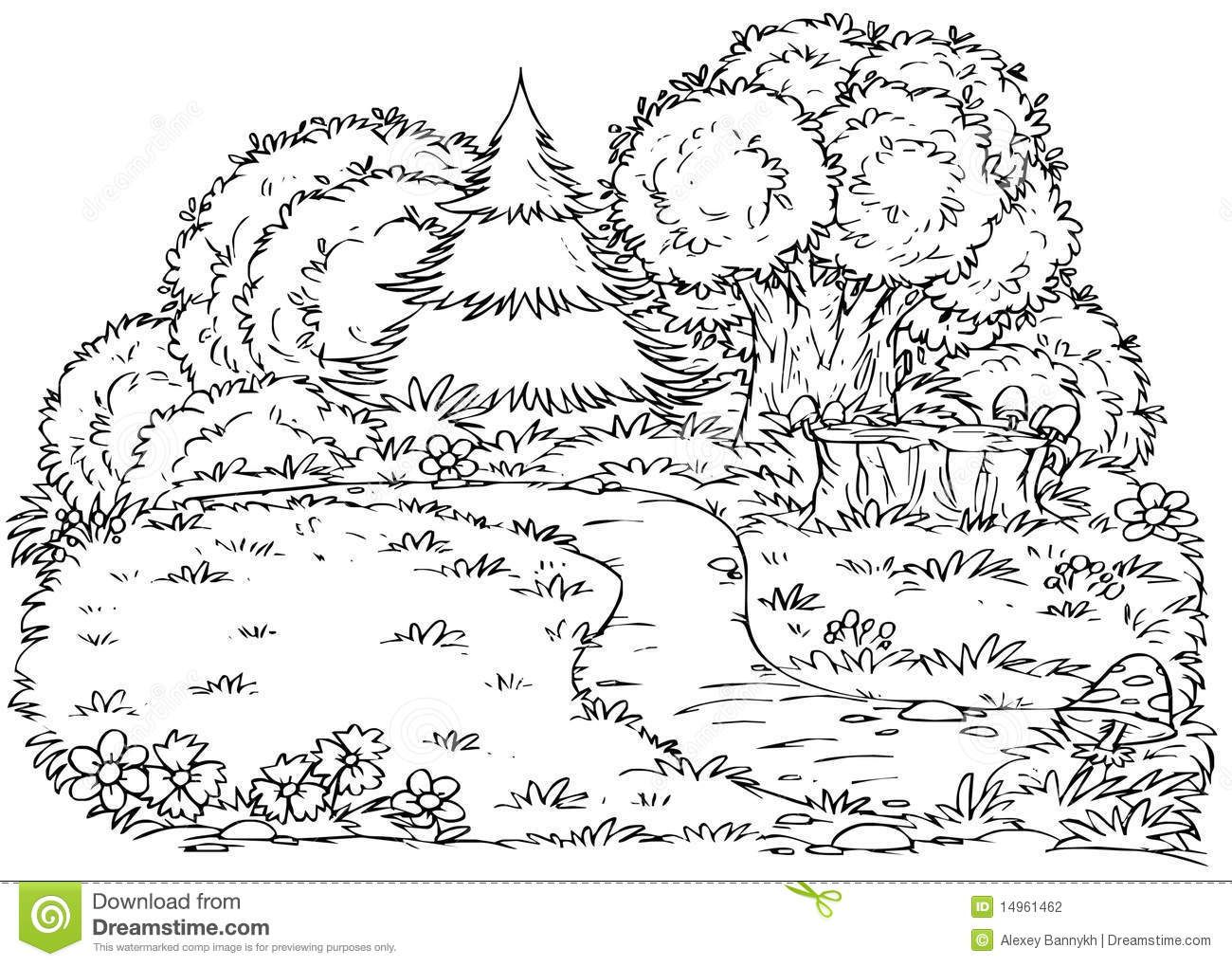 And White Illustration Coloring Page Forest Glade With