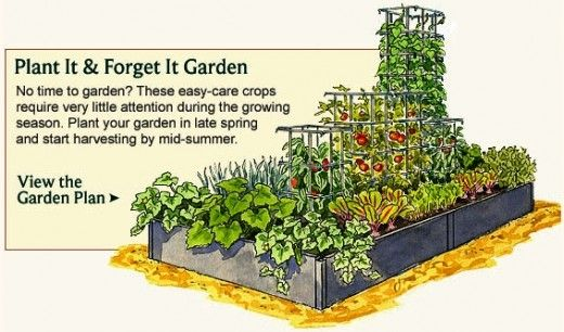 Simple Vegetable Garden Ideas - Small home vegetable garden ideas