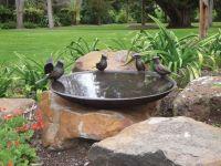 Blue Jay Birdbath Bowl / Willie Wildlife Sculpture ...