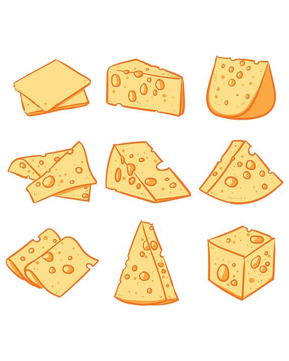 Vector set of cheese isolated Hand drawn cheese vector