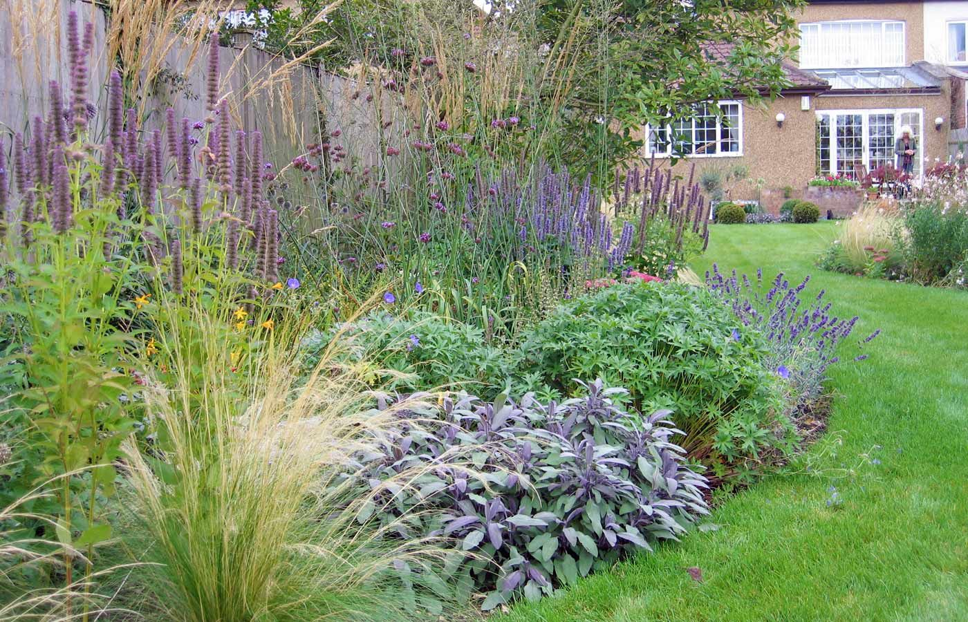 Grasses And Perennials In Surrey Cottage Garden Backyard