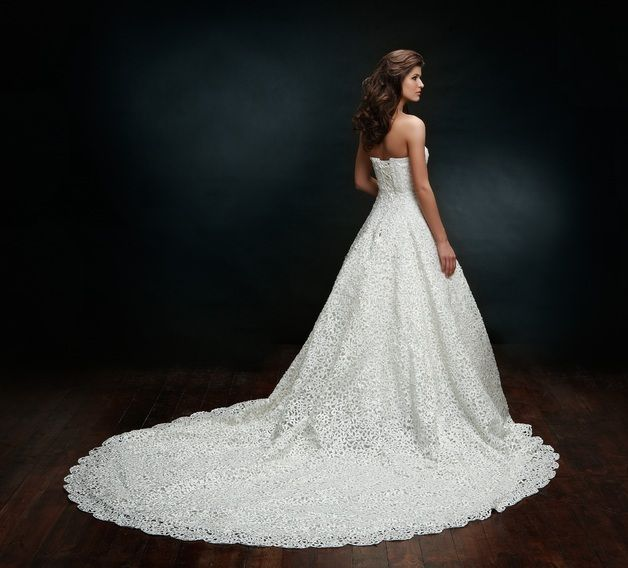 Luxus Brautkleid Mit Langer Schleppe & Spitze Spitze Hochzeit