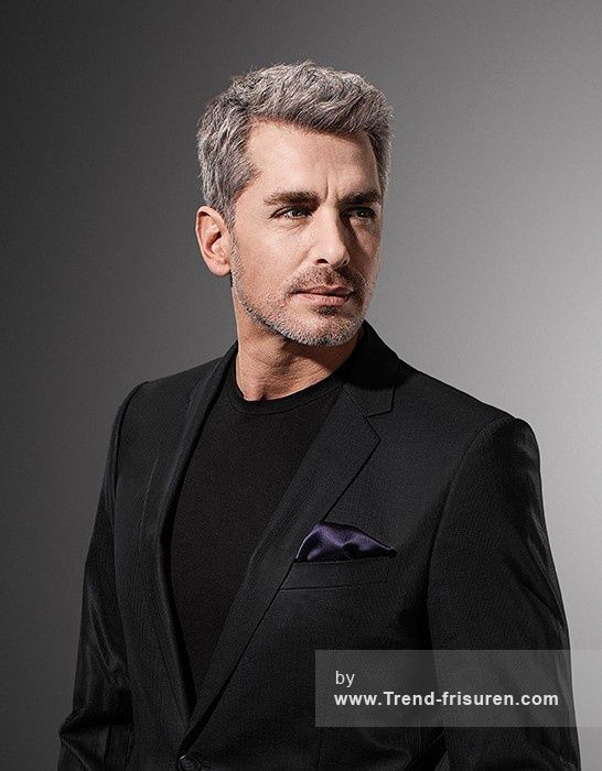 WELLA Kurze Grau Männlich Gerade Herren Haarschnitt Frisuren