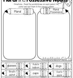 Possessive Nouns Worksheets 3rd Grade [ 1325 x 1024 Pixel ]