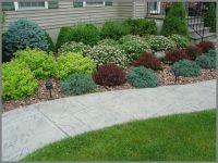 House foundation shrub plantings of barberry, spirea, blue ...