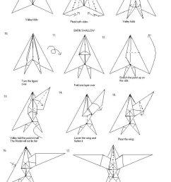 barn swallow wing [ 737 x 2012 Pixel ]