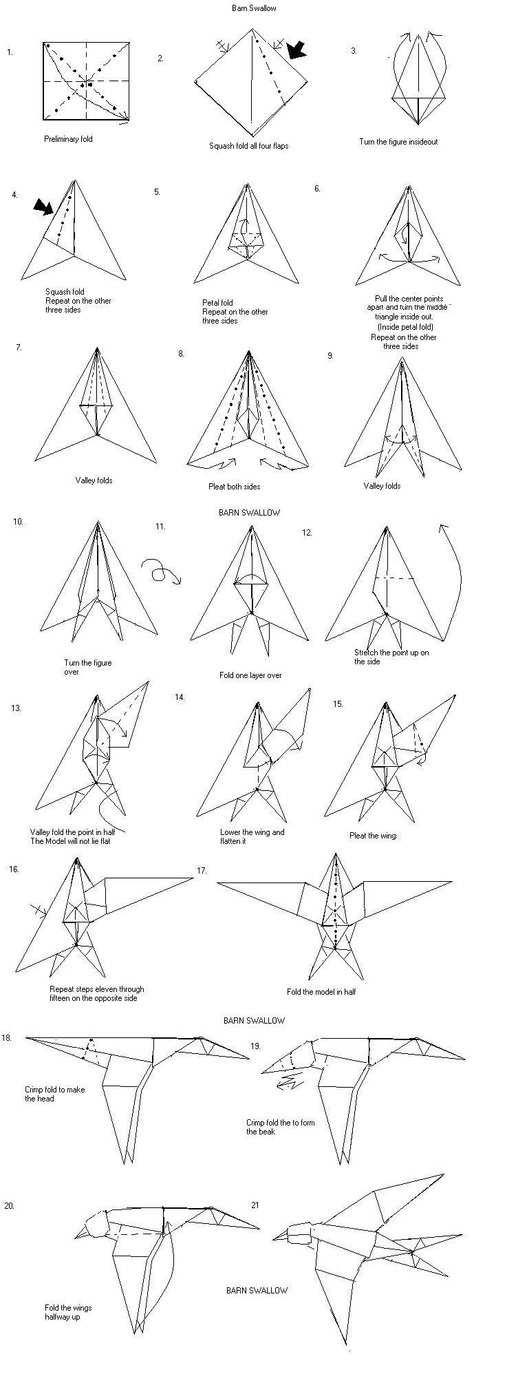 medium resolution of barn swallow wing