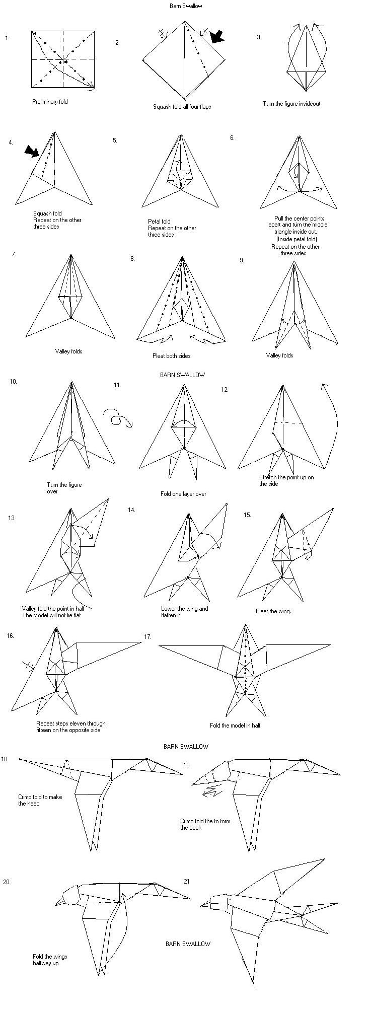 hight resolution of barn swallow wing