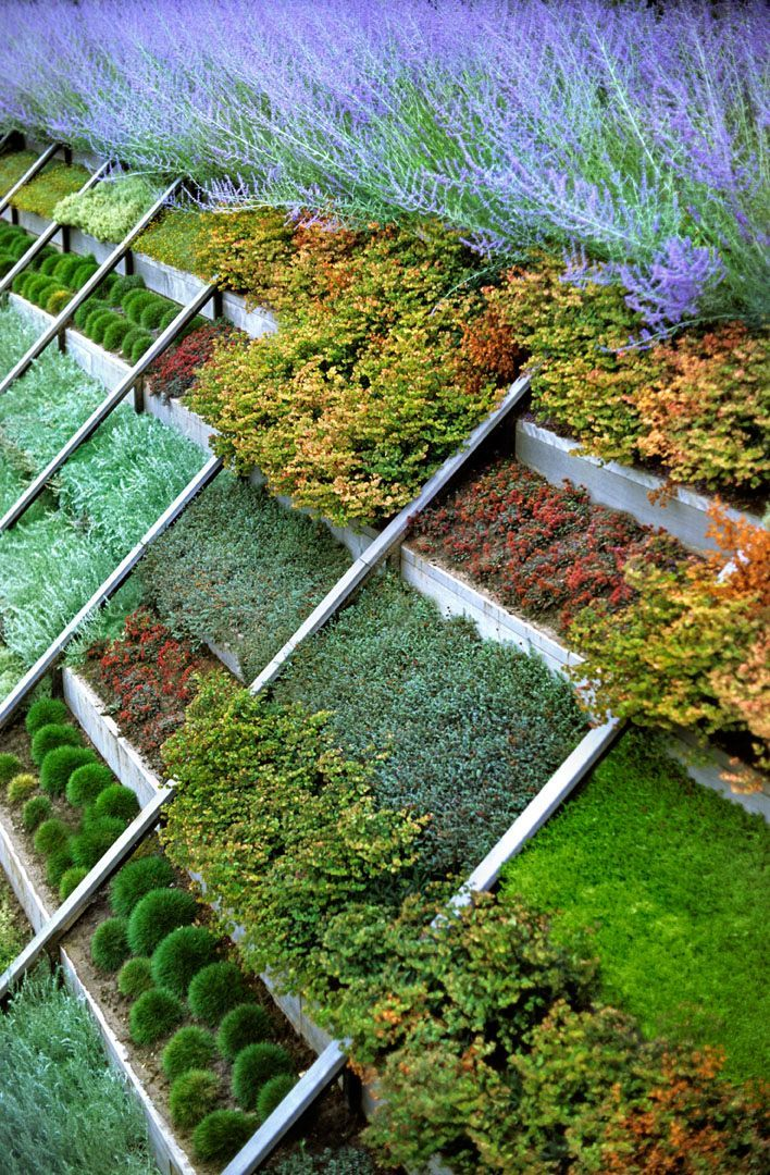 Great Way To Plant A Slope Great Gardens & Ideas Terraced