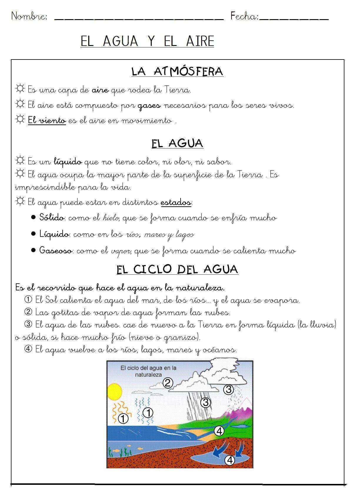 Ficha Resumen Sobre El Ciclo Dela Gua