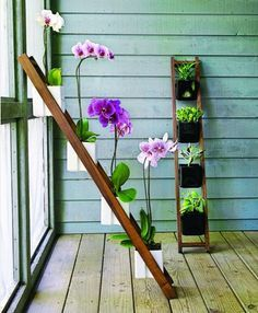 Apartment Gardening Ideas Google Search Gardening Pinterest