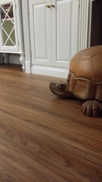 New Engineered Vinyl Plank flooring called Classico Teak