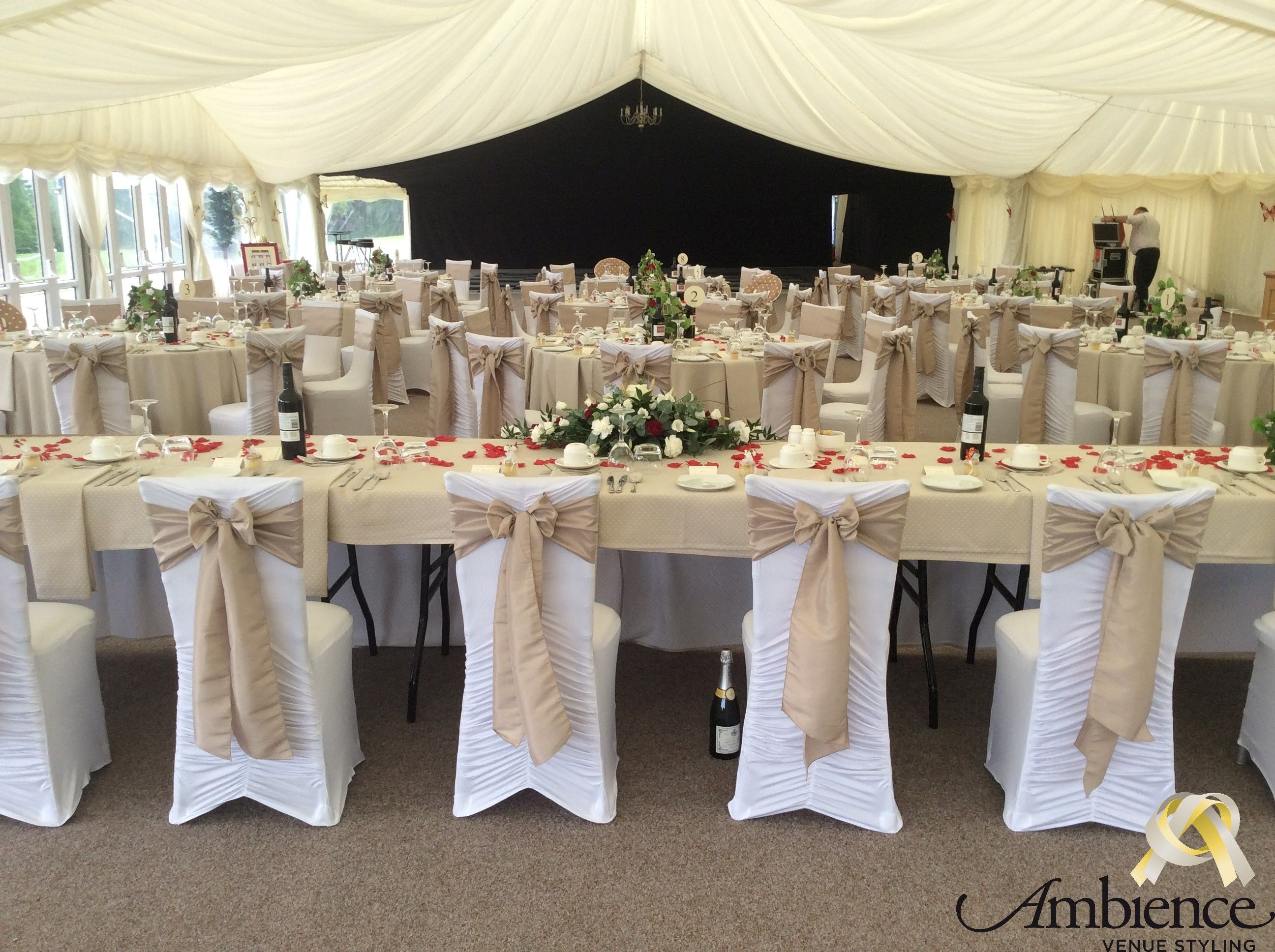 chair cover rentals halifax directors canvas styling by jayne from ambience derbyshire http www