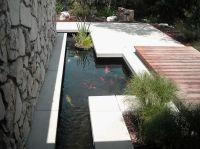 Garden. Amusing Placate Garden Ponds Design Ideas ...