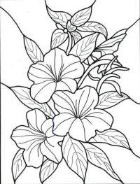 hawaiian flower Colouring Pages (page 2 | Hawaiian flowers ...