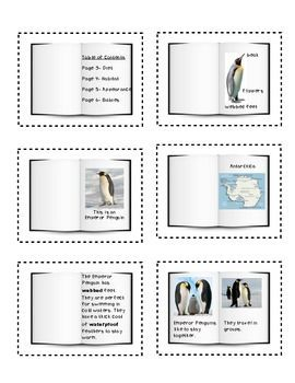 Non-fiction Text Features for primary students.