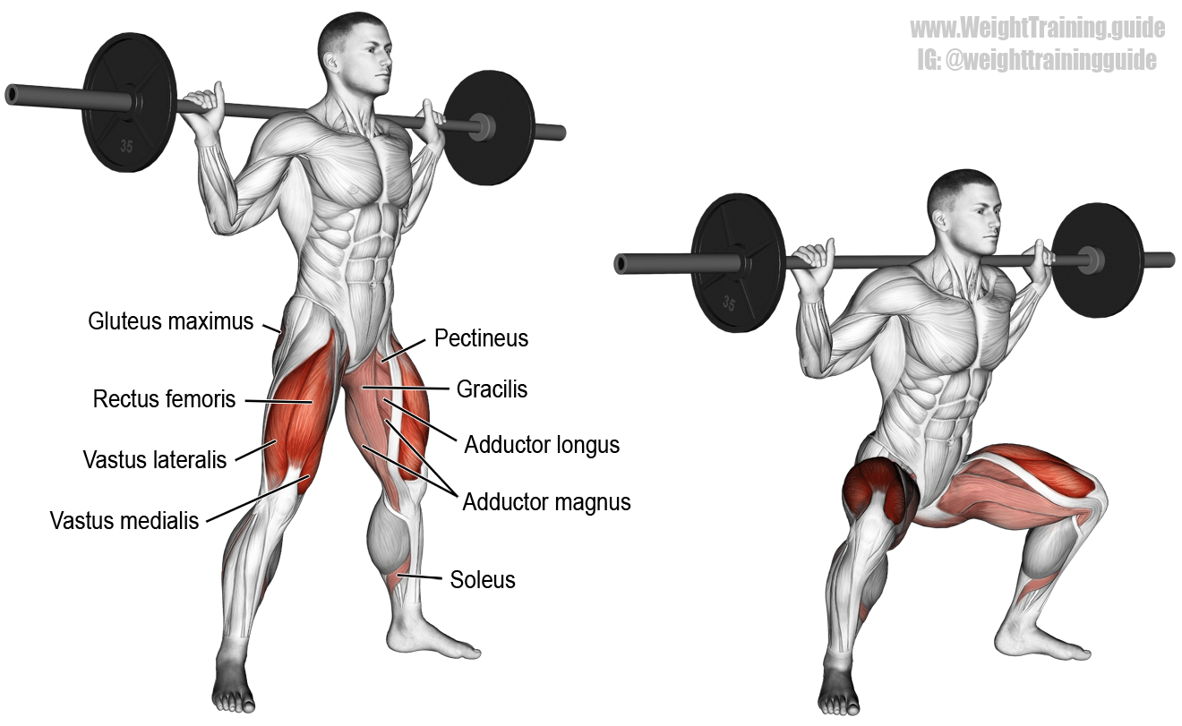 Barbell sumo squat. A compound lower-body exercise. Target