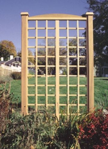 Another Trellis That Could Be Adapted To Be A Wall Trellis