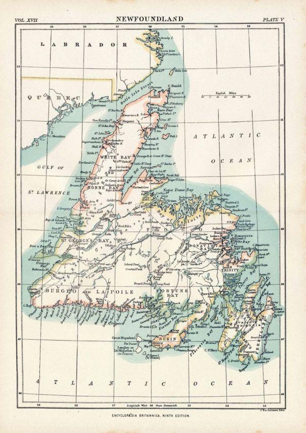 Antique Map of Newfoundland 1884 Vintage Map Home