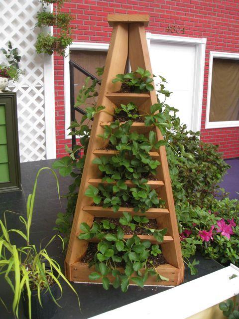 Another Strawberry Garden Garden Stuff Pinterest Jardins