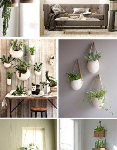 Casa verde  ecologica espacos cheios de plants gardens and house also rh pinterest
