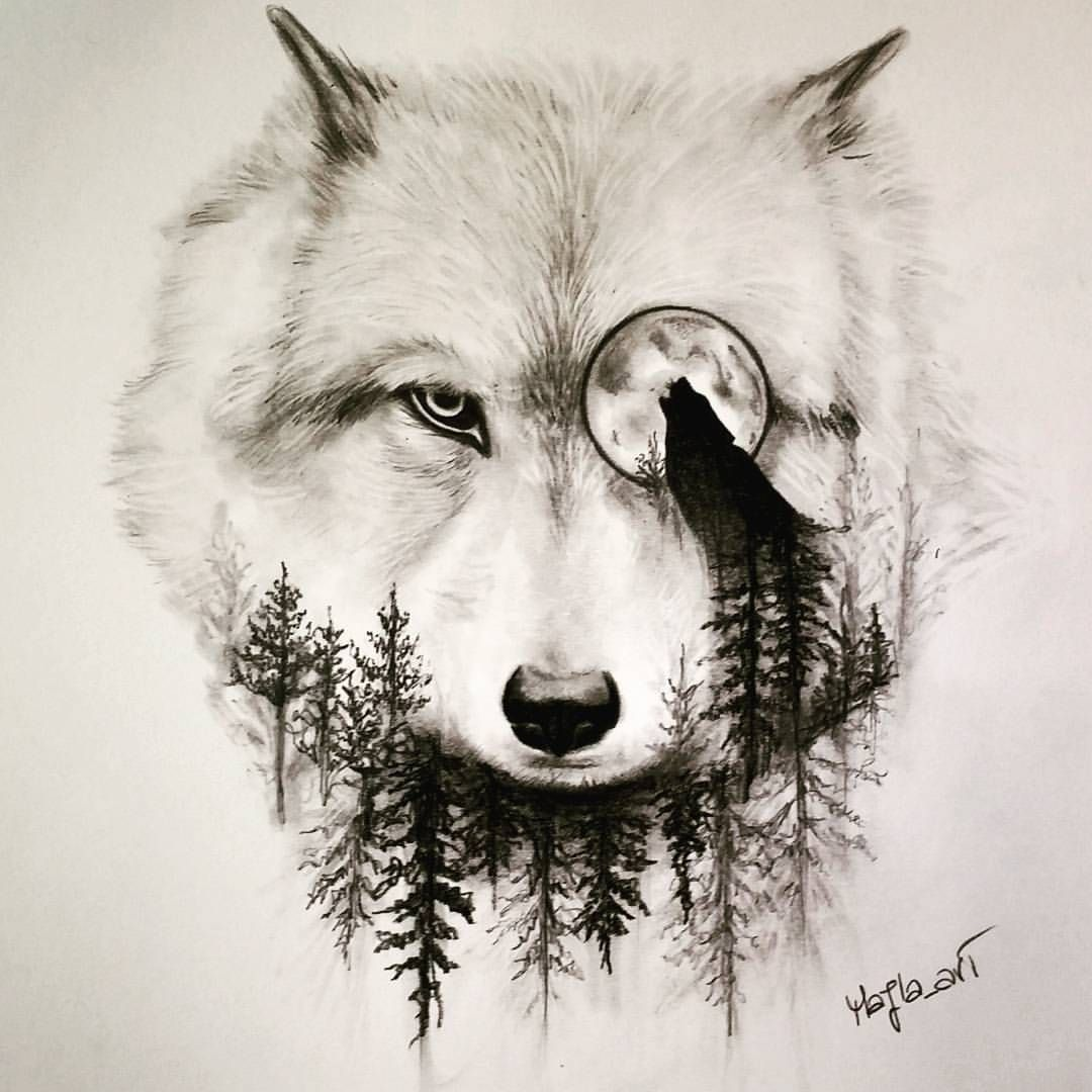 Beautiful Baby Wolves Draw Simple