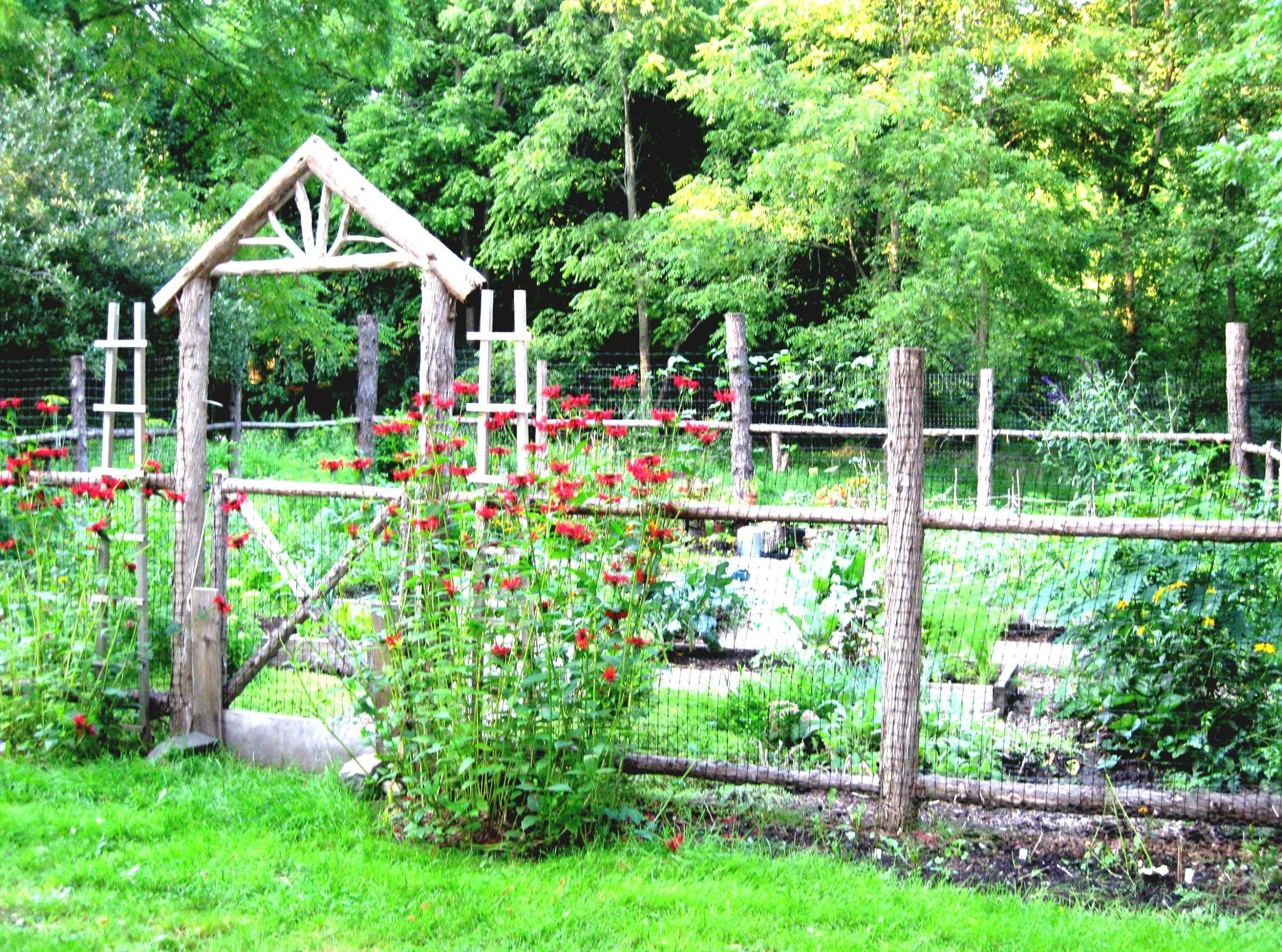 The 25 Best Ideas About Vegetable Garden Fences On Pinterest