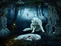 Cool Wolf Backgrounds Wallpaper | HD Wallpapers ...
