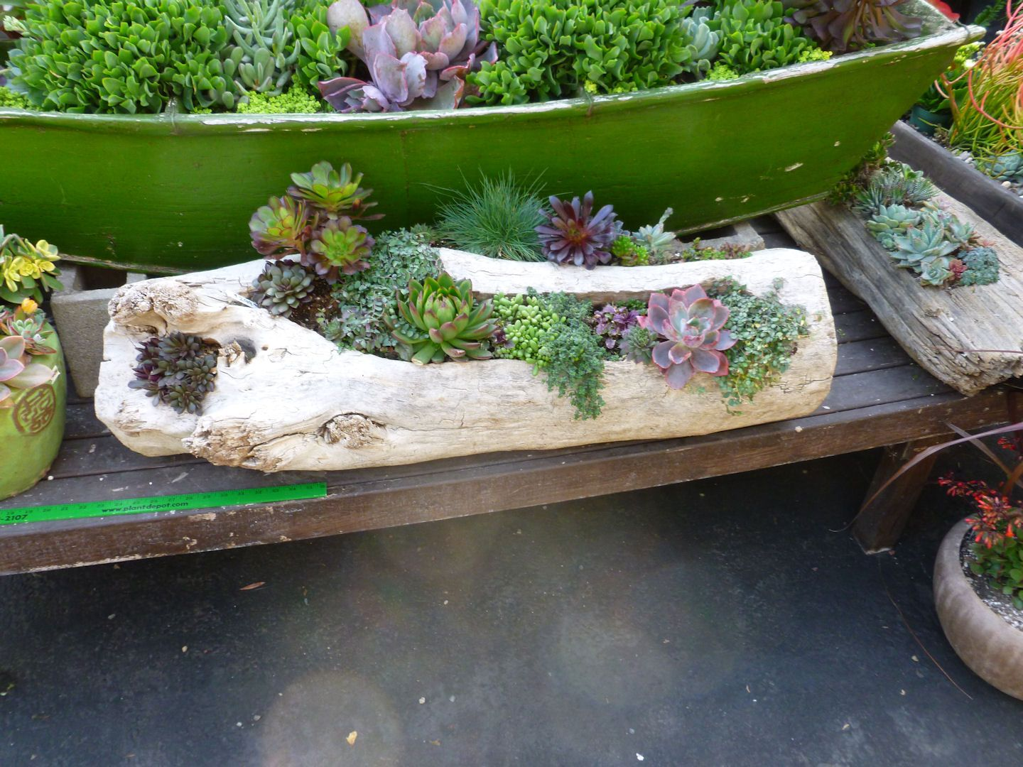 The 25 Best Ideas About Driftwood Planters On Pinterest