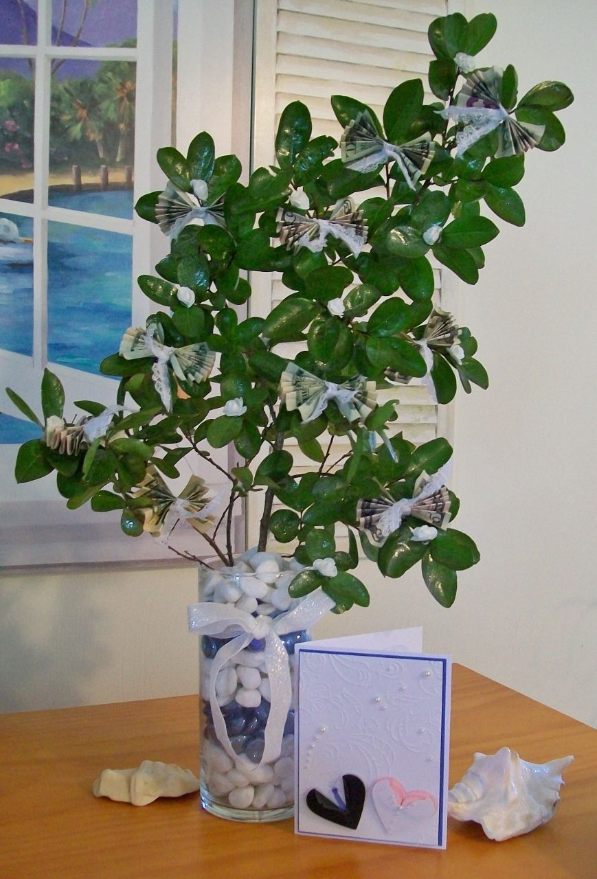 Money tree and card for a wedding  Hobby Lobby